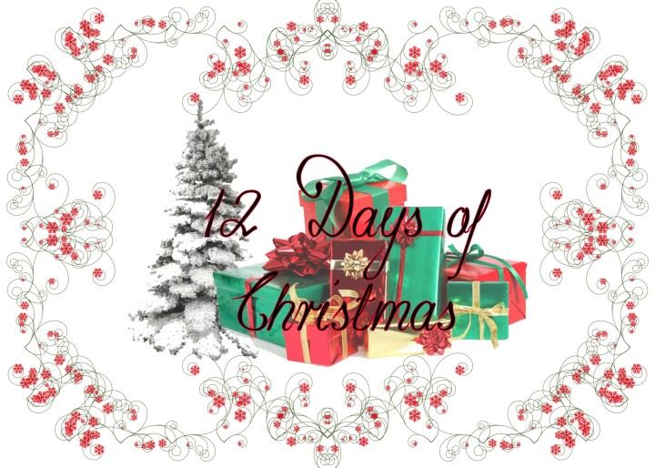 12 Days of Christmas Contest