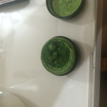 Ardene's Green Eyeshadow